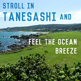 STOLL IN TANESASHI AND FEEL THE OCEAN BREEZE