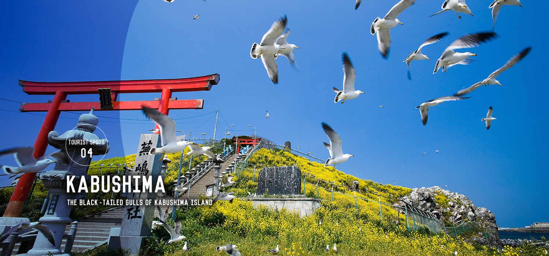 Kabushima Island