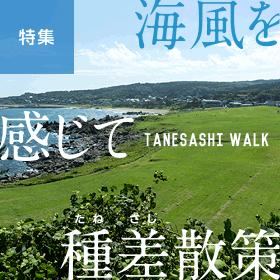 風光明媚な三陸復興国立公園特集「海風を感じて種差海岸」 | 青森県八戸市
